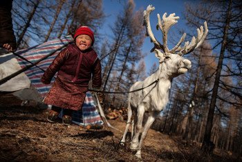 A young girl jumps for joy next to her family's reindeer in a remote area of Tsagaannur in the northern Mongolia.