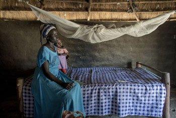 Wanawake wengi zaidi katika nchi za Afrika zilizo kusini mwa jangwa la Sahara wanatumia vyandarua vyenye viuatilifu ili kujikinga dhidi ya Malaria.