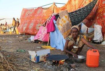 Ocha calcula que conflito em Tigray já fez 2 milhões de deslocados