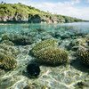 Beveridge Reef, located within the waters of Niue in the central Pacific Ocean.