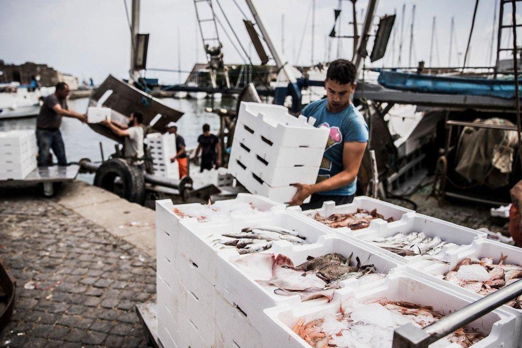 意大利拉齐奥的海岸警卫队定期进行检查,以确保渔船得到适当的许可和监管。
