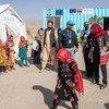 अफ़ग़ानिस्तान के हेरात शहर के बाहरी इलाक़ में, विस्थापित लोगों के लिये बनाए गए एक शिविर में, यूनीसेफ़ के पदाधिकारियों का दौरा.