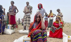 Food is distributed to people in the Afar region of Ethiopia.