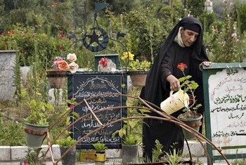 克什米尔地区,一位母亲正在为儿子墓碑前的植物浇水。