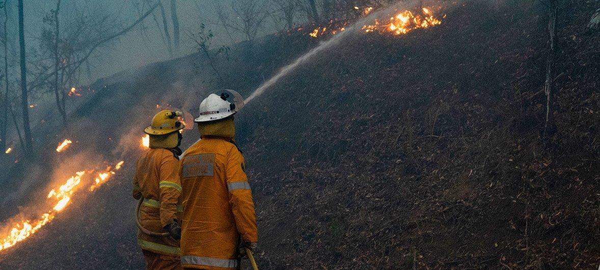 Bomberos en Queensland, Australia, se enfrentan a las llamas.