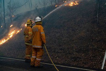 Власти Италии считают, что пожарным может быть человек с ростом не менее 161 см. В связи с этим ограничением многие женщины не могут работать в пожарной службе.