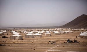 Displacement sites across Yemen continue to see an increased number of people of people seeking refuge from violence.
