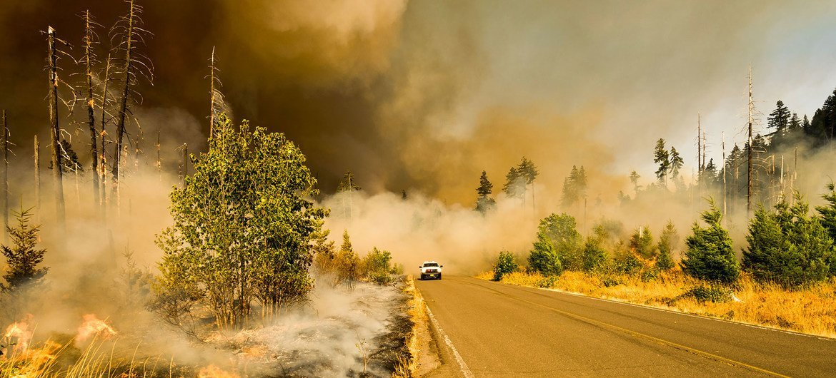 A wildfire burns in a national park in Oregon, USA.
