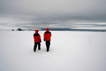 King George Island, en la Antarctica.