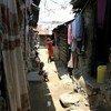 Les habitants du campement de Moroto Simitini à Mombasa ont été durement touchés par les conséquences économiques de la Covid-19.
