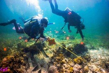 Cerca de 30 jóvenes apoyan la protección de los arrecifes de coral en el litoral caribeño de Costa Rica.
