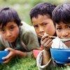 厄瓜多尔儿童在吃饭。