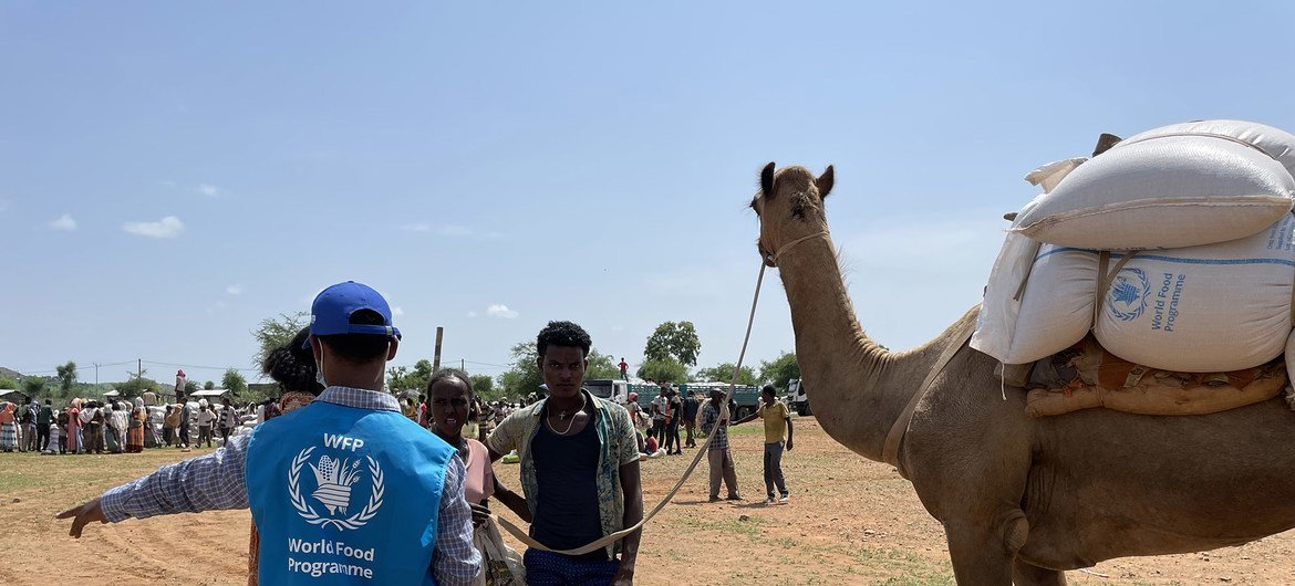 A World Food Programme idiosyncratic    supports a organisation  of nutrient  successful  bluish   Ethiopia, wherever  struggle  is worsening the humanitarian situation.