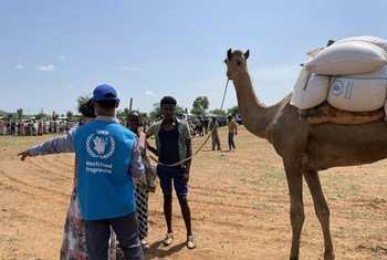 أحد العاملين في برنامج الأغذية العالمي يدعم توزيع المواد الغذائية في شمال إثيوبيا، حيث يؤدي الصراع إلى تفاقم الوضع الإنساني.