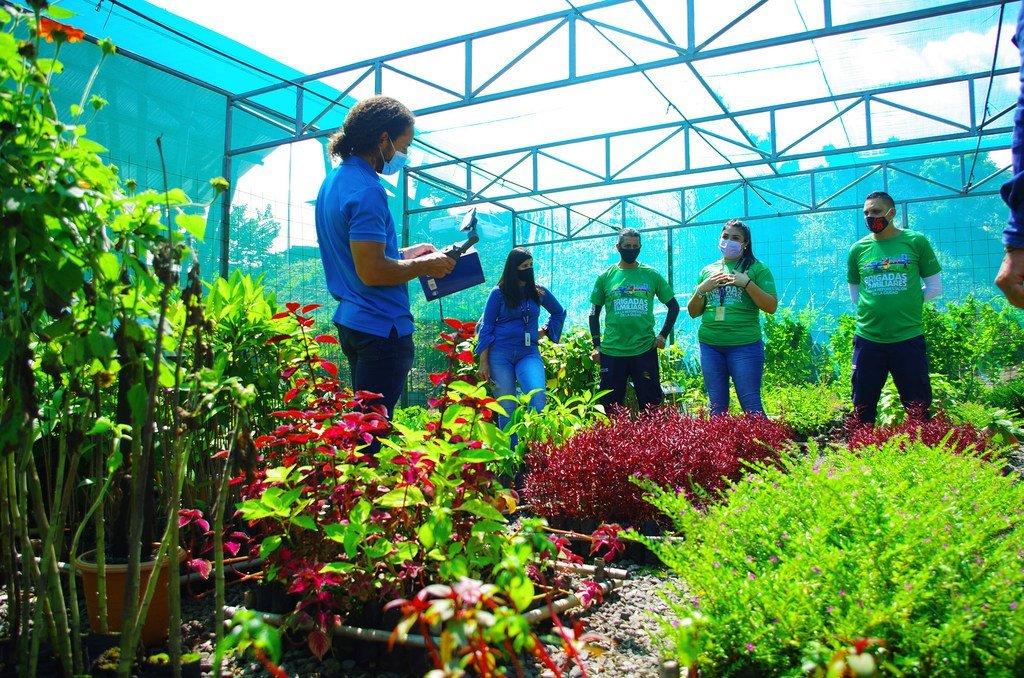 Personal de la municipalidad vela diariamente por el cuidado de las plantas en el vivero de Alajuelita.
