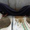अफ़ग़ानिस्तान में न्याय व्यवस्था हिंसा और यौन अपराधों की पीड़ित महिलाओं व लड़कियों को न्याय दिलाने में नाकाम रहा है.