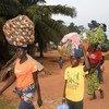 Des Centrafricains craignant la violence électorale fuient vers la République démocratique du Congo.