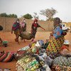 At least 30,000 migrants are stranded at borders in West Africa according to the UN.