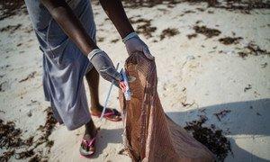 肯尼亚瓦塔穆海滩上的垃圾被清除。