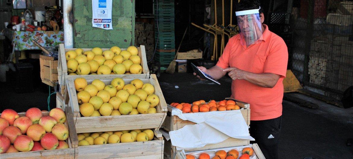 El mercado Lo Valledor, principal mayorista de Chile, sigue funcionando durante la pandemia de COVID-19