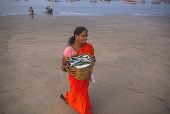 A woman carries fish from the shore in Maharashtra, India.
