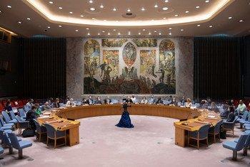 O Conselho decretou um embargo de armas à República Centro-Africana que vigora desde 2013