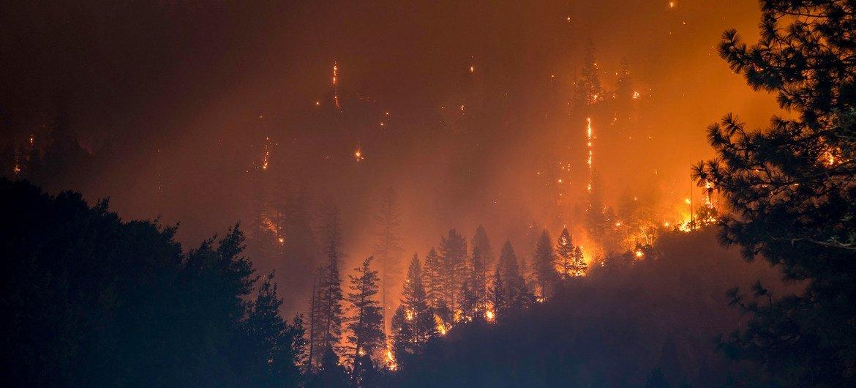 Incêndio na Floresta Nacional de Klamath, na Califórnia, nos Estados Unidos.