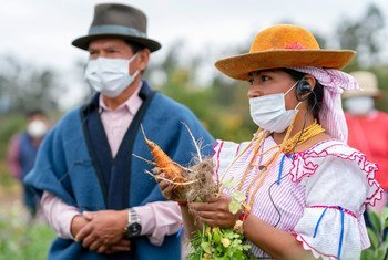 Líderes indígenas en una zona rural de Imbabura, en Ecuador. Ellos reciben ayuda del Programa Mundial de Alimentos en medio de la pandemia.