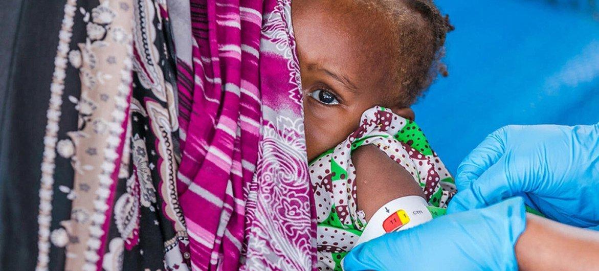برنامج الأغذية العالمي يوسع نطاق تقديم المساعدات الغذائية والتغذوية للمتضررين من كوفيد-19 في ولايات بورنو وأدماوا ويوب.