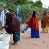 达达布难民营的难民遵守新冠预防规程认真洗手。