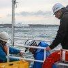 IAEA observes the collection of sea water samples near the damaged Fukushima Daiichi Nuclear Power Station. 7 November 2013.