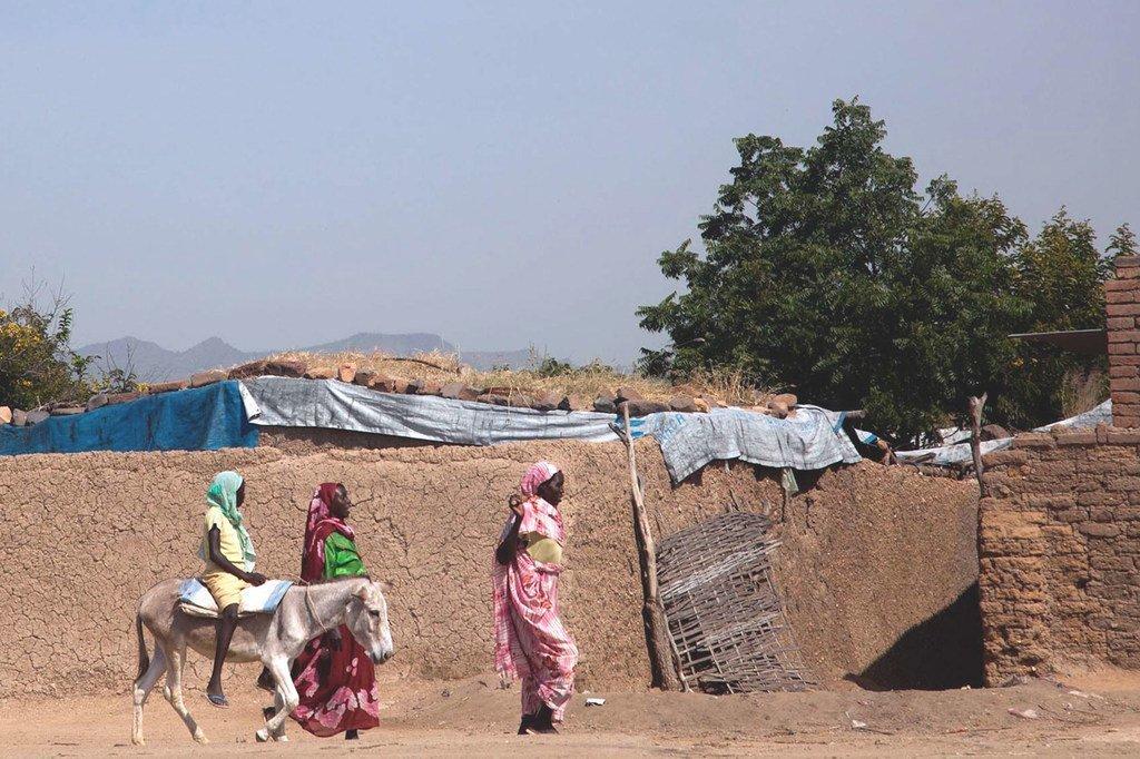 苏丹达尔富尔中部的一个小镇(Zalingei)。