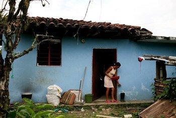 Un criador de aves de corral en Santander, Colombia.