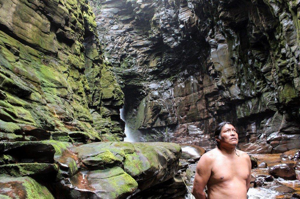 Los pueblos indígenas cuidan del medio ambiente.
