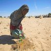 A young girl waters seedlings in Merea, Lake Chad, an activity which has become a daily chore.