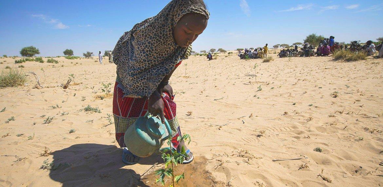 La Niña de 2021 pourrait provoquer, dans les régions de la Corne de l'Afrique, de l'Asie centrale et de l'Asie du Sud-Est, des précipitations inférieures à la normale