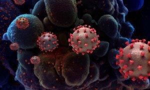 Imagen digital de partículas del coronavirus que causa el COVID-19.