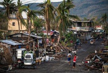 """菲律宾阿尔拜州的居民在超级台风""""天鹅""""摧毁了他们村庄的一周后,翻找他们被摧毁的房屋。"""