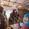 Ethiopian refugees register with UNHCR at Um Rakuba camp in Al Qadarif state, Sudan, after fleeing their home.