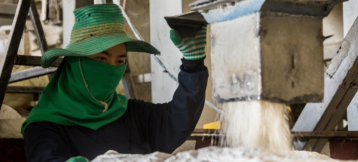 A rice mill worker fills a sack with rice in Ratchathani province, Thailand.