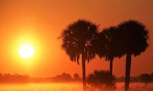美国佛罗里达州奥基乔比郡。