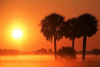 Okeechobee County, Florida, United States.