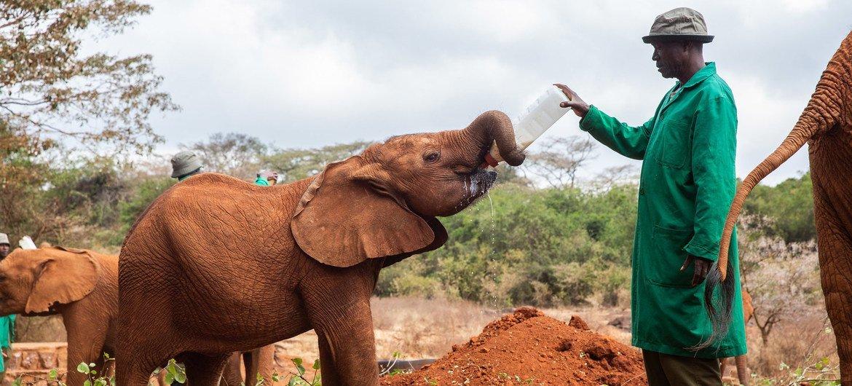 Photo : UNEP