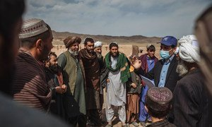 L'OIM soutient les familles de déplacés en Afghanistan en fournissant des abris d'urgence et de la protection