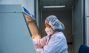فنية مختبر تعمل في مركز صحي وعلمي في بانكوك، تايلاند. وهو مركز متعاون مع منظمة الصحة العالمية للبحوث والتدريب على الأمراض الحيوانية فيروسية المنشأ.