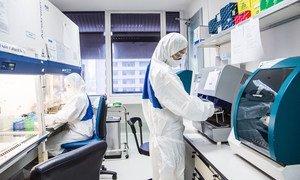 Técnicos num centro de pesquisa e treinamento em zoonoses virais, em Bangkok, na Tailândia