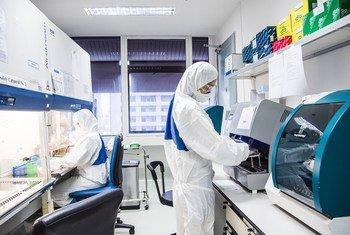 Un technicien de laboratoire dans un centre de recherche collaborant avec l'OMS sur les zoonoses virales à Bangkok, en Thaïlande.