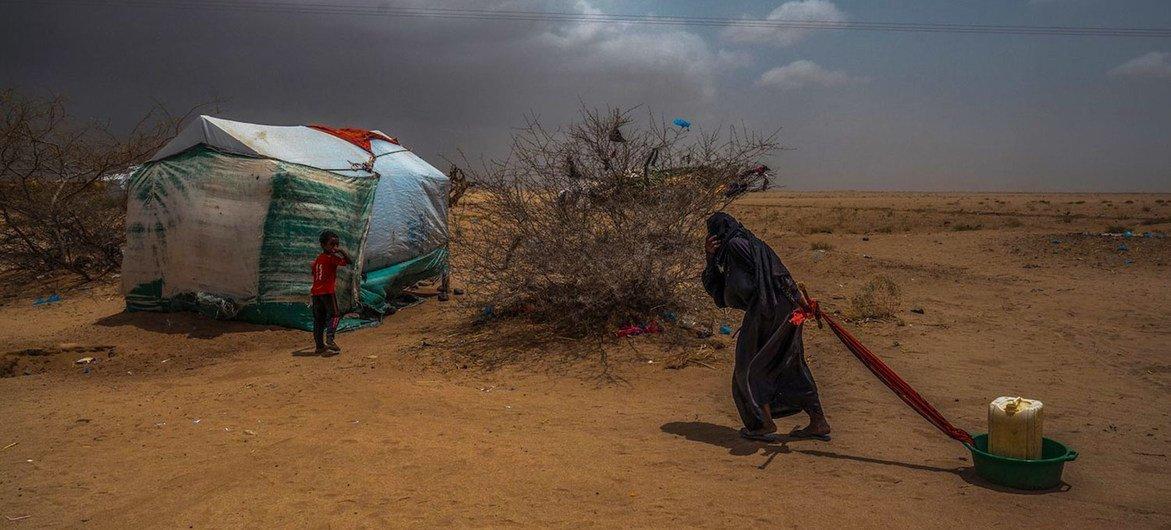 Una anciana transporta agua hasta su tienda en un campo de desplazados en Abs, cerca de la frontera con Arabia Saudí, en el norte de Yemen.