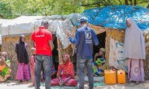 新冠大流行正在影响世界上最弱势人群的营养,尤其是儿童、孕妇和哺乳母亲。世界粮食计划署的一名工作人员在尼日利亚迈杜古里的一个非正式的境内流离失所者定居点对流离失所者进行访问。