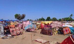 Un site de déplacement de fortune à N'Djamena, la capitale du Tchad, où des crues soudaines ont forcé des gens à quitter leurs maisons.